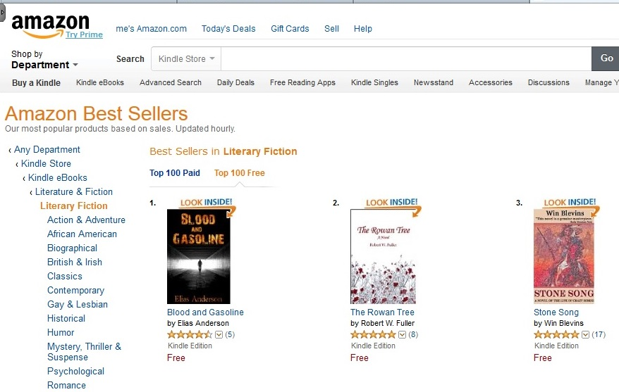 the top 3 of Amazon's Literary Fiction eBook Best Seller list